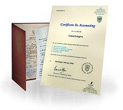 Программа Международная практика бухгалтерского учета в менеджменте: выдаваемые документы